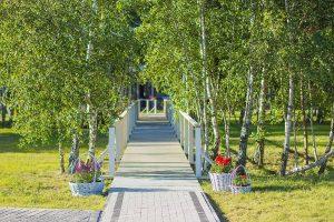 Piękny Zielony teren w Ośrodku domków nad morzem Morska Przystań